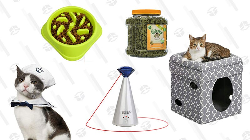 Illustration for article titled If Your Cat Is a Mega Chonk, You Need These 5 Things In Your House