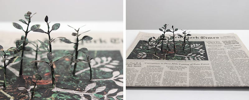 Illustration for article titled Cutting Trees From Newspapers Is The Height Of Irony