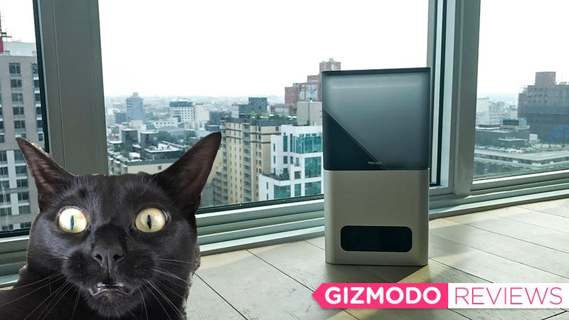 All images: Rae Paoletta/Gizmodo