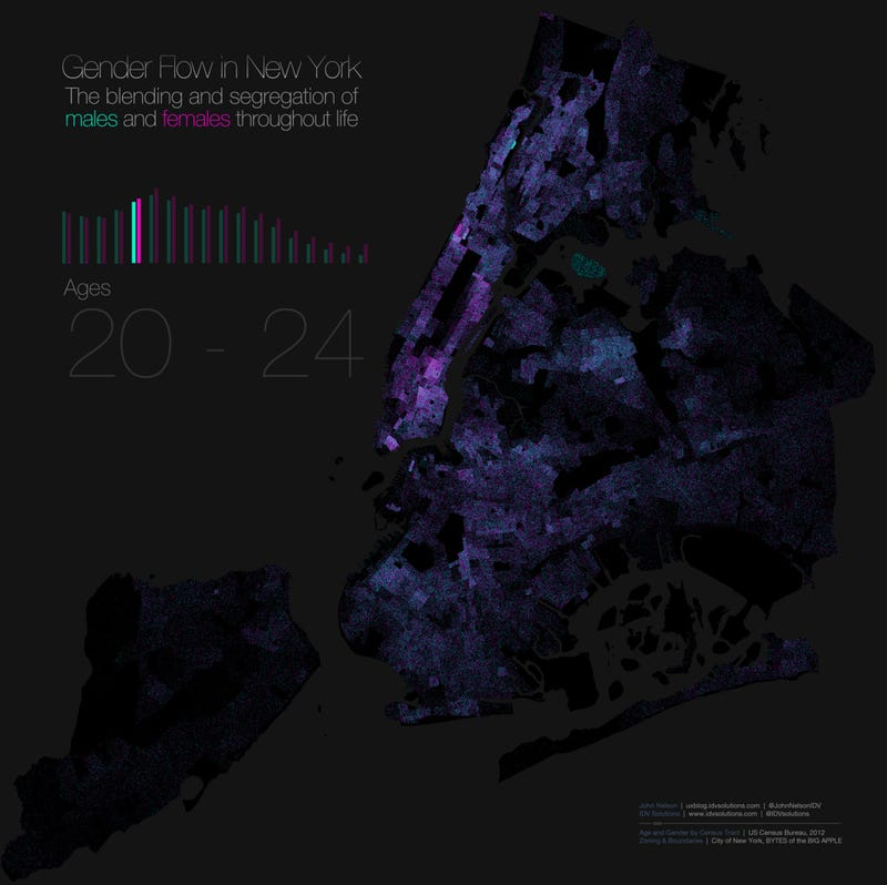 This Map Of Gender Segregation Shows How New Yorkers Live And Die - Blended map of the us election