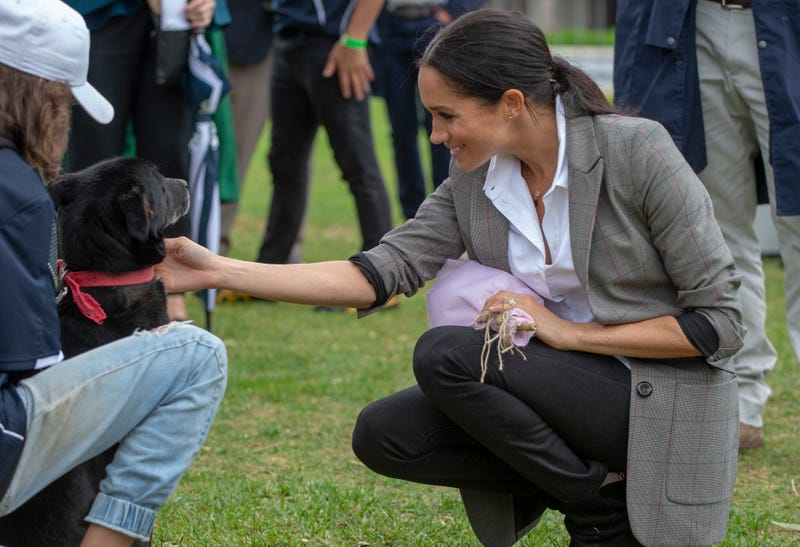 Meghan, Duchess of Sussex pats a dog at a Community Event at Victoria Park on Oct. 17, 2018 in Dubbo, Australia.