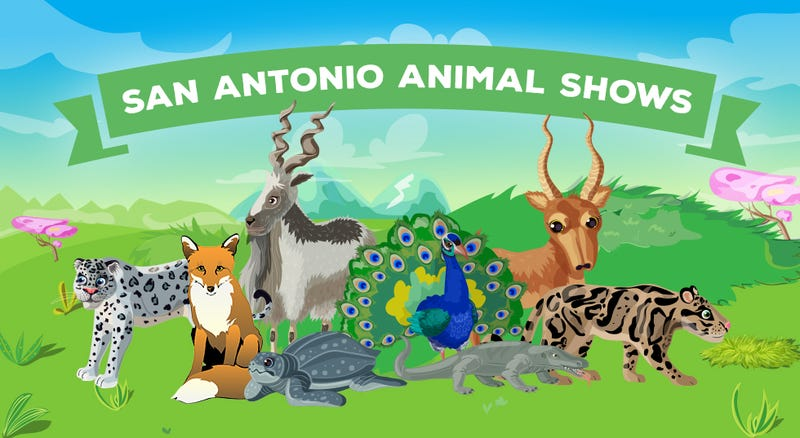 Illustration for article titled SAN ANTONIO ANIMAL SHOWS