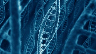Illustration for article titled The Human Genome Is Far More Complex Than Scientists Thought