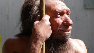 Illustration for article titled Ancient humans just couldn't stop having sex with Neanderthals
