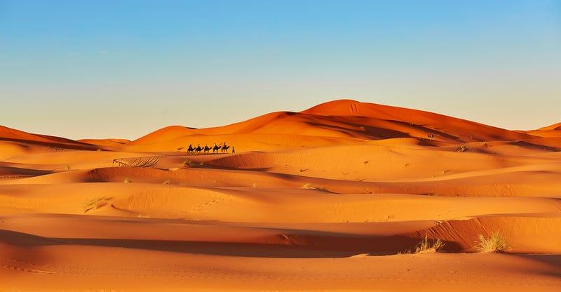 Hace 5000 años, el Sahara era un oasis exuberante de vida (y por qué importa)