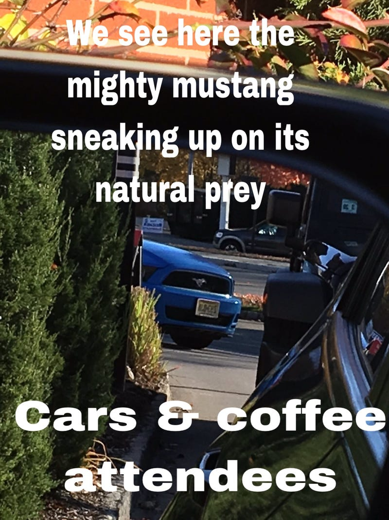 Unrelated meme I made a few days ago
