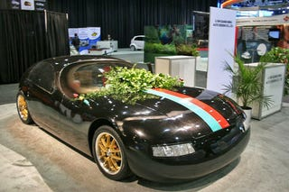Illustration for article titled Chinese Unveil Electric Dong Car Covered In Bush