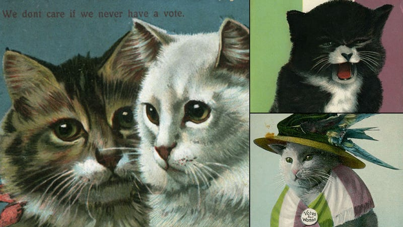 Illustration for article titled Suffragette Cats Are the Original Cat Ladies