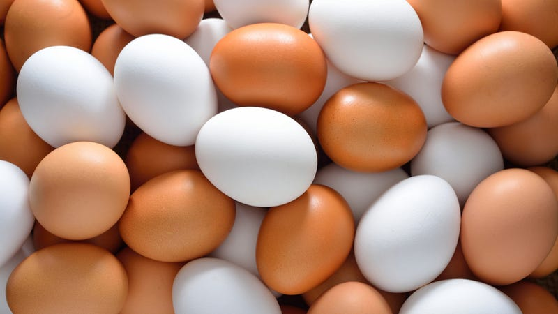 what s the real difference between brown and white eggs