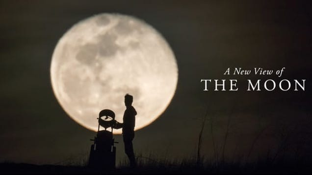 photo image This Charming Video of Moonstruck Pedestrians Is a Good Reminder to Check Out Our Cool Moon