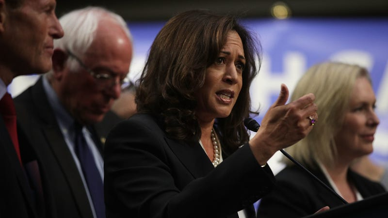 Sens. Bernie Sanders (I-VT) and Kamala Harris (D-CA) threw their support behind Sen. Ron Wyden's (D-OR) Protecting American Votes and Elections (PAVE) Act on Wednesday.