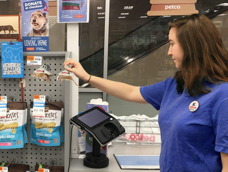 Illustration for article titled Petco Employee Stocks Gerbils By The Cash Register For Impulse Purchases