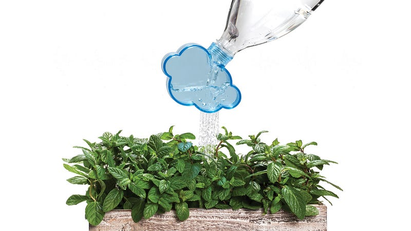 Illustration for article titled A Screw-On Cloud That Turns Plastic Bottles Into Watering Cans