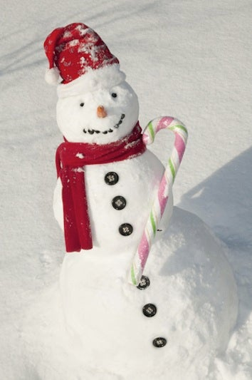 Illustration for article titled Woman Calls Police To Report Missing Snowman