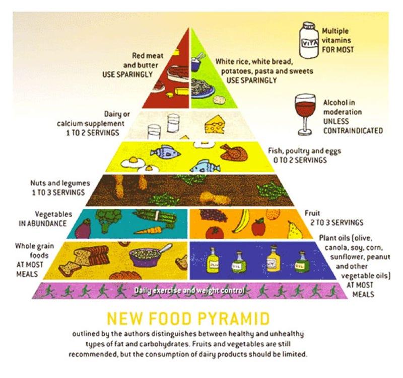 Population Pyramid Worksheet Katinabags – Trophic Levels Worksheet