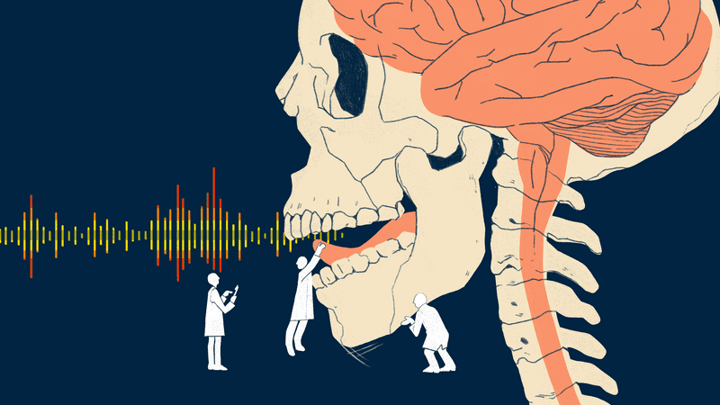Illustration for article titled Vocal Tract Simulator Translates a Person's Brain Activity Into Clear Sentences