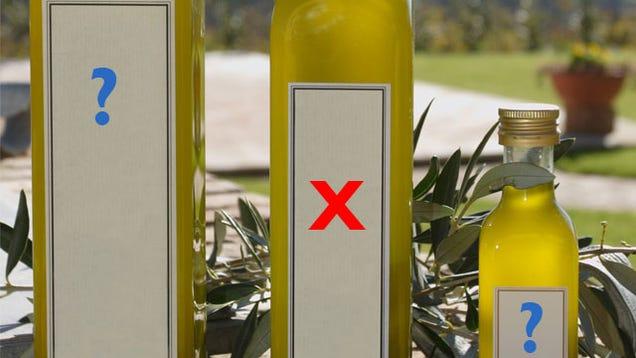 Kết quả hình ảnh cho olive fake