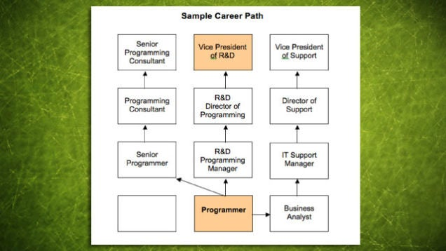 how to write a career plan template - how to choose a career path brainscape blog