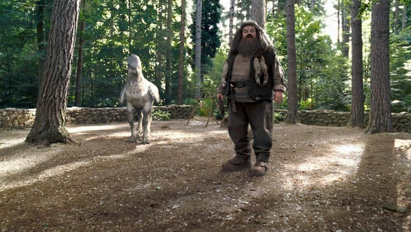Hagrid and one of his magical pals.