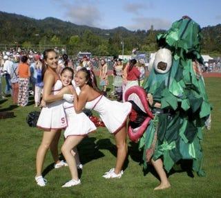 Stanford Mascot