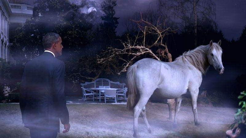 Longing to touch its pearly coat, the president is said to have stumbled over dozens of tree roots and stooped under countless low-hanging boughs in pursuit of the magnificent horse.