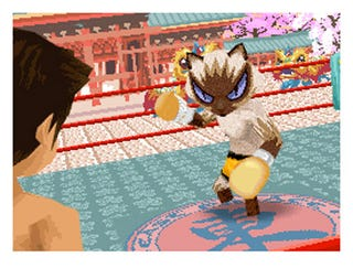 Illustration for article titled Animal Boxing Lets You Punch A Cat Right In The Face
