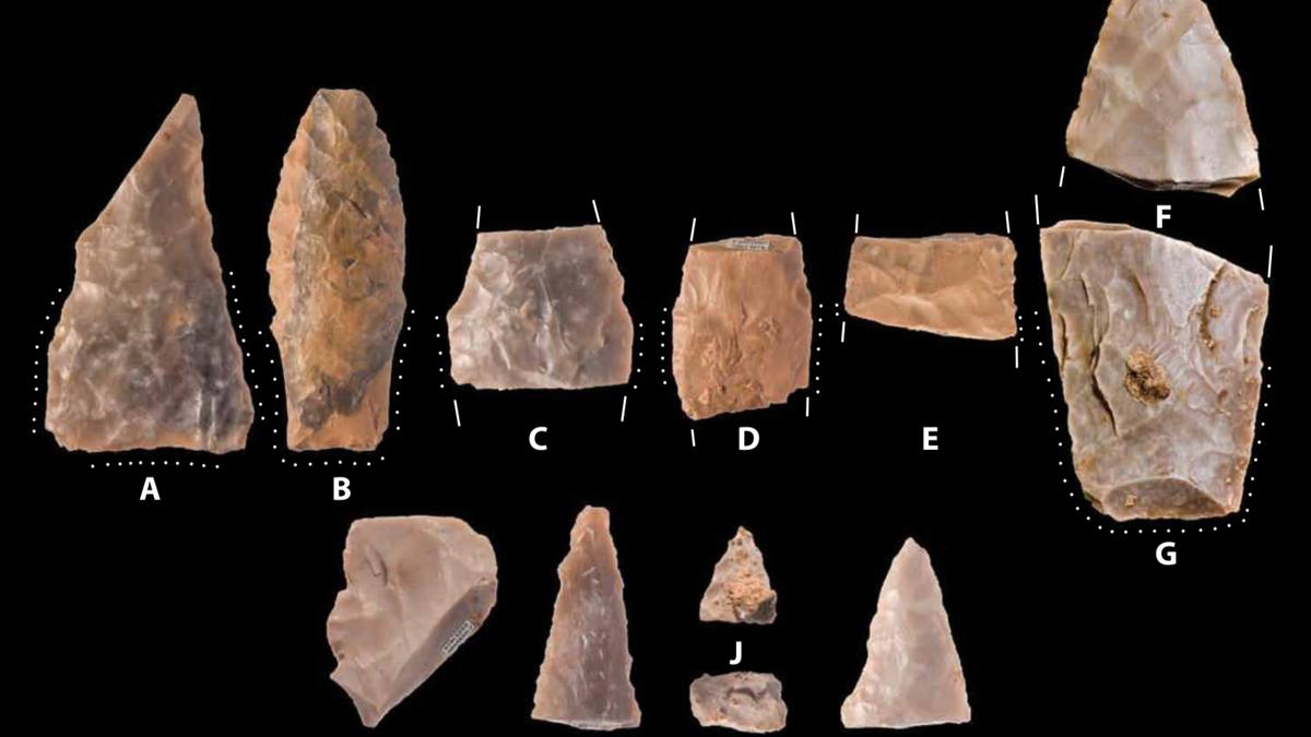 Clovis point dating