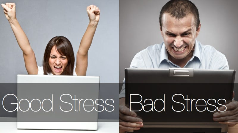 Illustration for article titled When stress makes you healthier