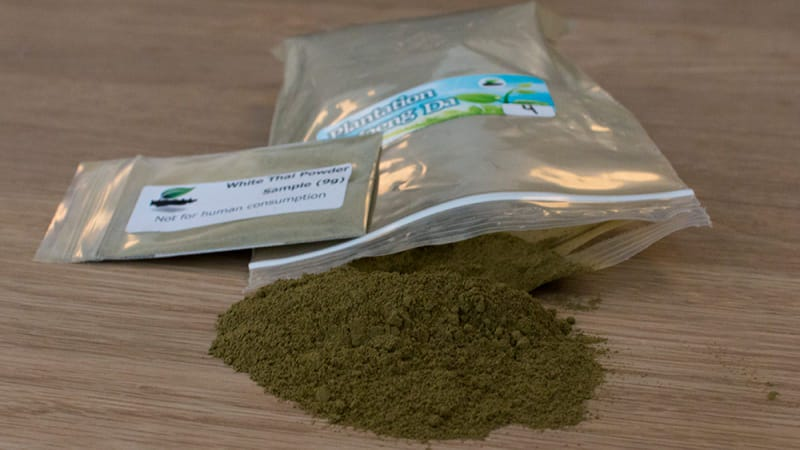 Illustration for article titled DEA Backpedals: Kratom Will Remain Legal, For Now