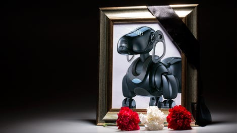 Sony S Robotic Dog Aibo Is Back From The Dead