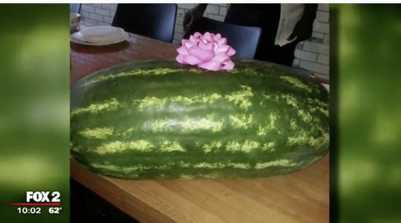 Firefighter fired after bringing watermelon as gift to work