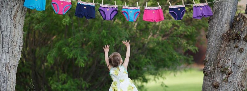 Illustration for article titled What women want out of their underwear, according to academic experts