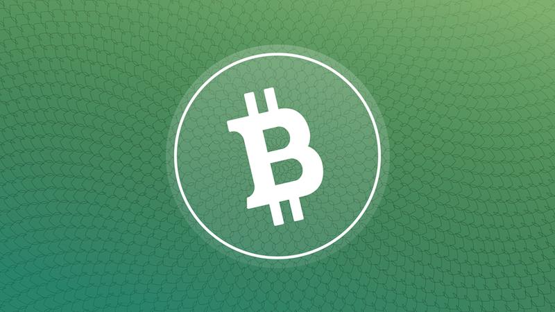 Image Source: Bitcoin Cash