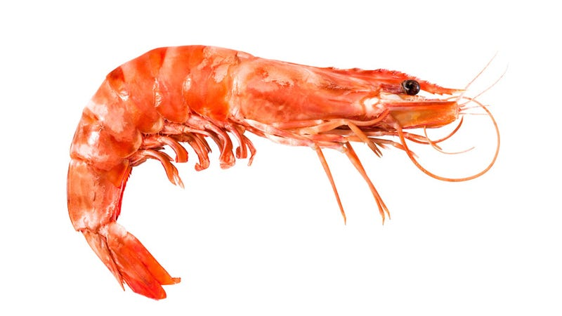 Illustration for article titled The Best Way to Steal Prawns From Costco Is Not to Shove Them Up Your Skirt