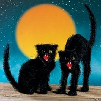 Illustration for article titled Dark Days