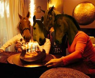 Illustration for article titled Levágott emberfejet kapott a ló a születésnapjára