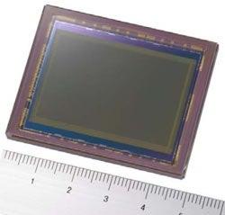 Illustration for article titled Sony's 25-Megapixel 35mm Image Sensor Is Up For Grabs