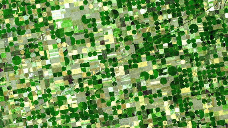 Crops in Kansas as seen from space.