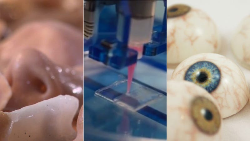 How 3d Printers Are Cranking Out Eyes Bones And Blood