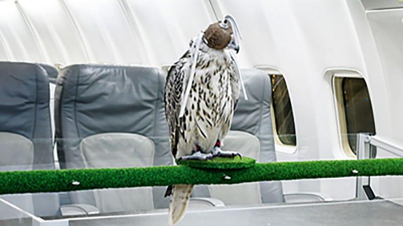 Photo: Lufthansa Technik