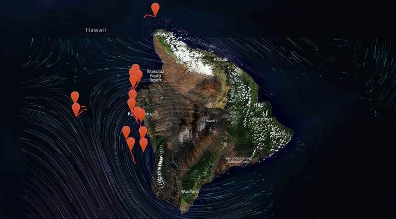 Illustration for article titled Watch As This Map Tracks the Whales Swimming Around Hawaii