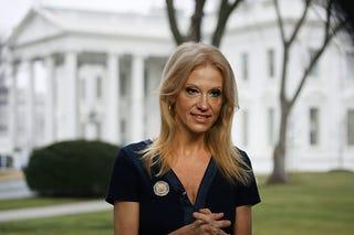 Kellyanne Conway (Mark Wilson/Getty Images)