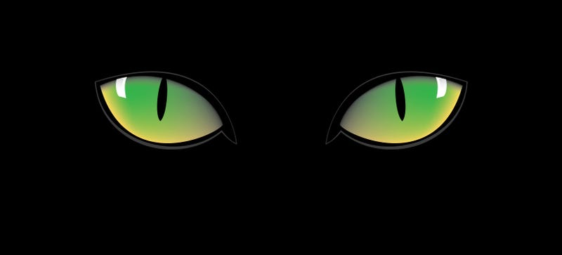 Illustration for article titled Cat Eyes and Other Radical Ideas to Re-Engineer Humans for the Future