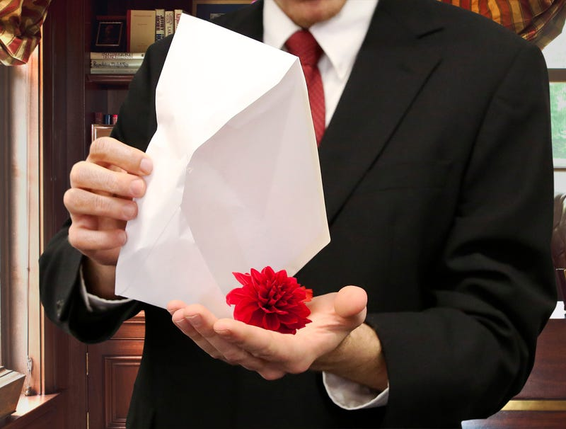 Illustration for article titled Color Drains From Michael Flynn's Face After Single Red Dahlia Drops Out Of Envelope From Russian Intelligence