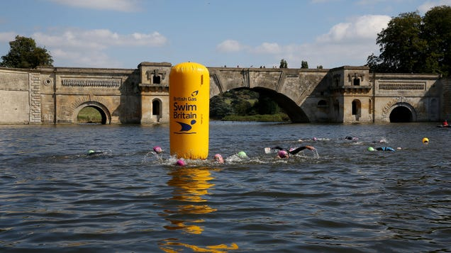 a0819e3ead At England's magnificent Blenheim Palace—the stately home to end all  stately homes—they've recently begun restoring a 250-year-old manmade lake  and bridge ...