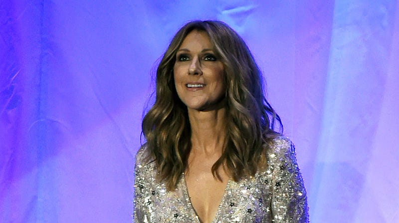 Illustration for article titled Celine Dion Stopped Her Final Vegas Show So a Fan Could Pee