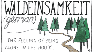 The World's Untranslatable Words