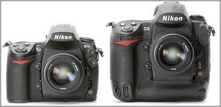 Illustration for article titled Differences Between Nikon D3 and D700 (aka Lil' D3)