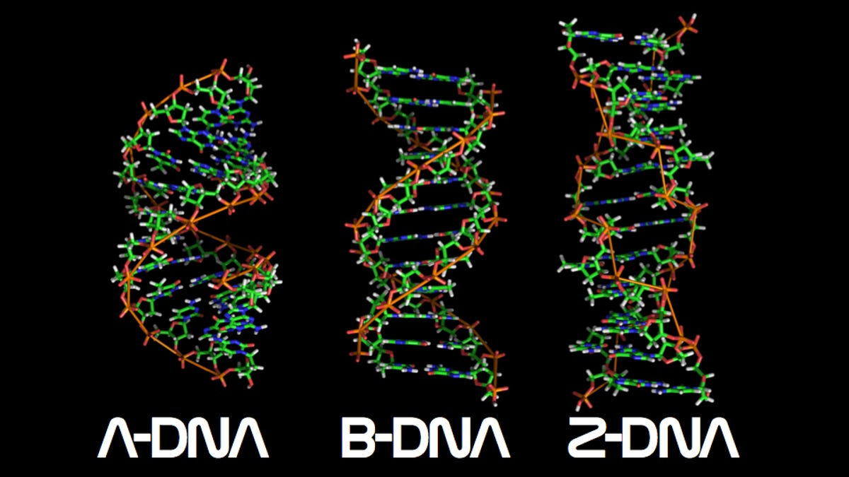 Ten things you probably didnt know about dna malvernweather Images