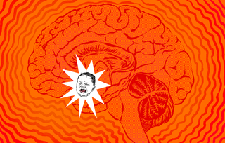 Illustration for article titled How a Human Scream Uniquely Activates the Fear Response in Your Brain